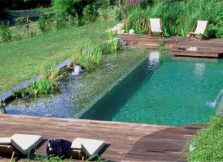 plantas piscina