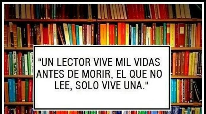 lectura-frases