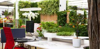oficina eco friendly