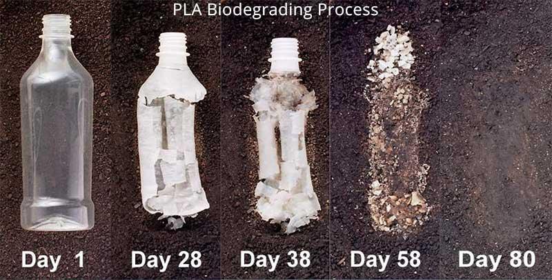 plásticos biodegradables o bioplásticos.