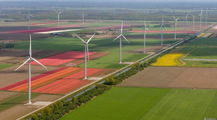 Opciones para trabajar en Holanda